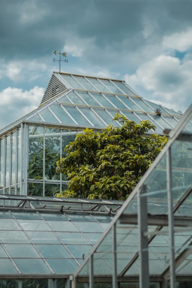Öko-Pioniere: Grüne Architekten weisen den Weg (Foto: Craig Whitehead, Unsplash)