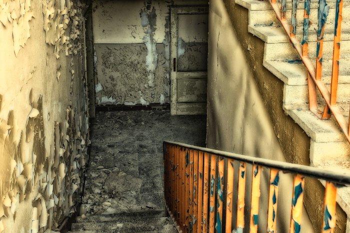Bei Schimmelbefall im Keller muss schnell gehandelt werden