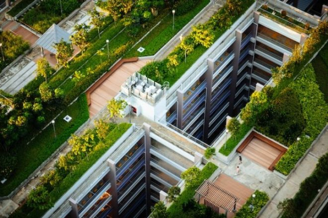 Garten auf dem Dach